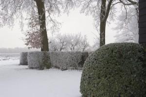 tuin hofstede2