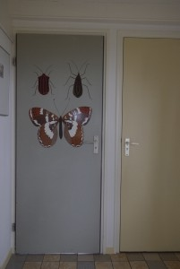 braamhuis vakantiehuis brh2